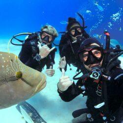 Cairns Scuba Diving Course