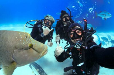 Cairns Scuba Diving Course