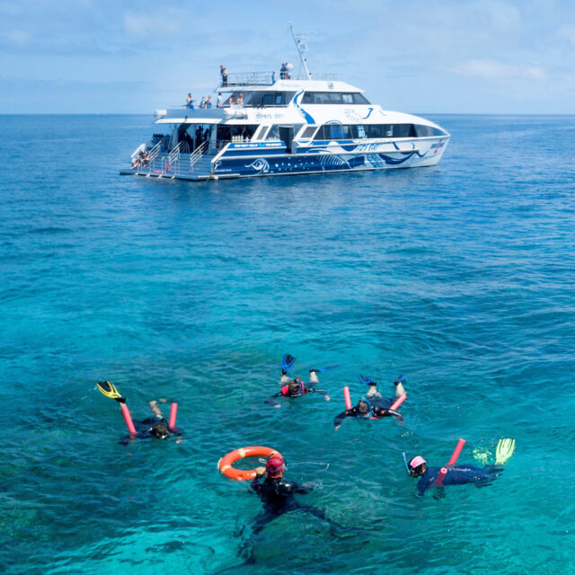 AquaQuest Great Barrier Reef Dive Snorkel Port Douglas