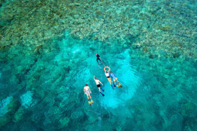 Budget Great Barrier Reef Snorkel Trip