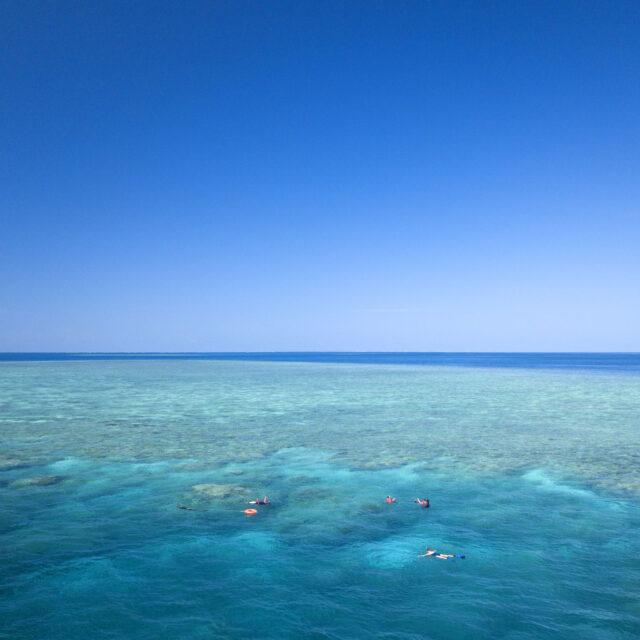 Cheap Great Barrier Reef Snorkel Trip