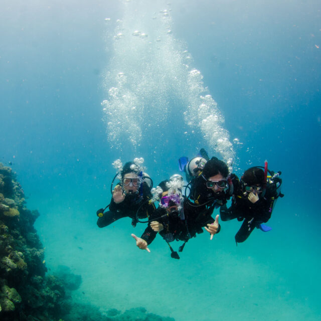 Budget Intro Scuba Dive Day Trip from Cairns