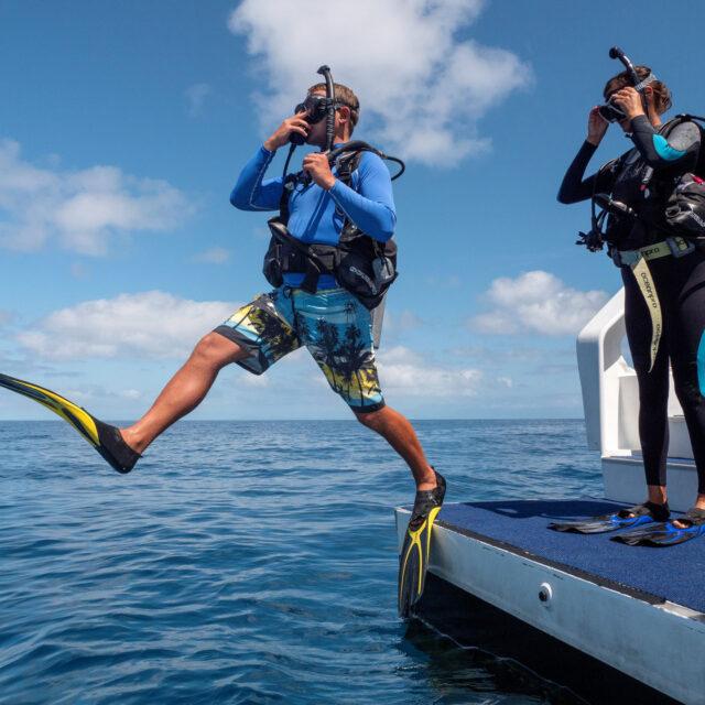 Certified Dive Day Trip Port Douglas Great Barrier Reef