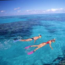 Great Barrier Reef Overnight Snorkel Trip