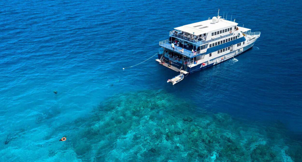 Liveaboard certified dive trip from Cairns