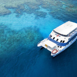 OceanQuest Liveaboard Great Barrier Reef Cairns