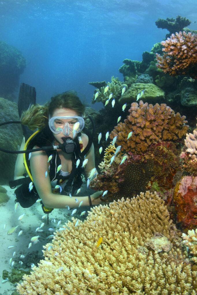 Port Douglas Cert Dive Great Barrier Reef