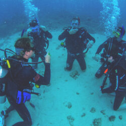 ReefQuest Outer Great Barrier Reef Intro Dive Trip Skills