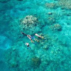 Great Barrier Reef Guided Snorkel Tour