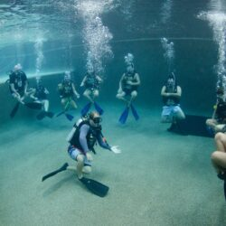 PADI Open Water Dive Course Cairns