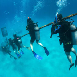 Scuba Diving Cairns Great Barrier Reef
