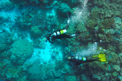 Nitrox Scuba Divers exploring the Great Barrier Reef