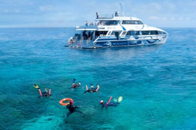 ReefQuest snorkel day trip from Cairns