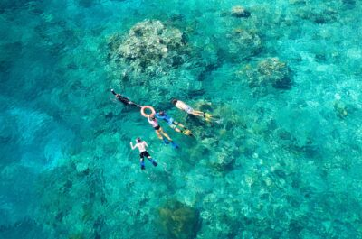 Cairns snorkelling