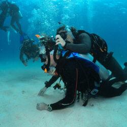 Divers Den IDC Cairns Open Water skills