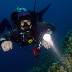 Night Diving Great Barrier Reef