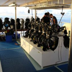 Spirit of freedom dive deck
