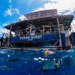 Cairns Great Barrier Reef Liveaboard