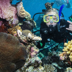 Learn to dive Cairns