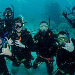 Divers Den PADI Course Progression
