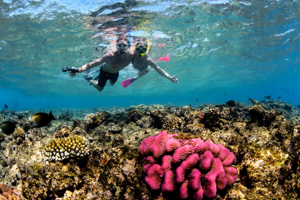 Great Barrier Reef Snorkel Trip from Cairns