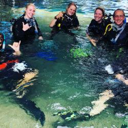 Cairns Divemaster Training Program - pool skills
