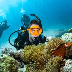 Cairns Divemaster Training Program - scuba diving