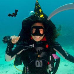 Divers Den Cairns Halloween Night Dive